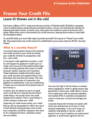 Freeze Your Credit File