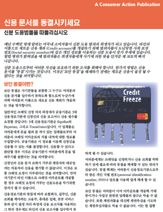 Freeze Your Credit File (Korean) Cover