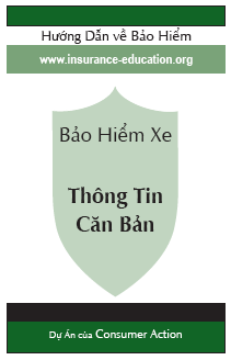 Auto Insurance: The Basics (Vietnamese)