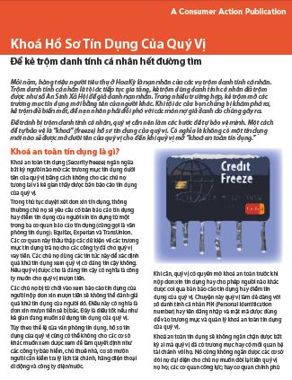 Freeze Your Credit File (Vietnamese)