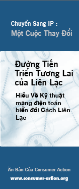 IP Transition: Making the Switch (Vietnamese)